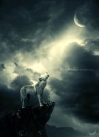 Howling at the Moon by IrvingGFM