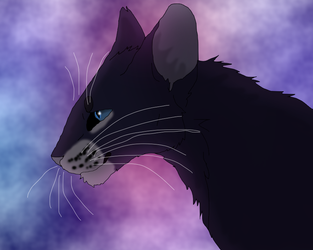 Crowfeather by TheRealBramblefire