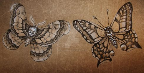 The Moth and the Butterfly by BenjiiBen