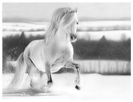 Fun In The Snow by Lianne-Issa