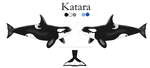 Katara Ref Sheet by NarniaOrca