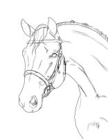Horse lineart  with Bridle by D-W-H