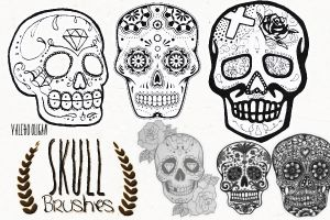 SKULL BRUSHES+ by ValeHooligan