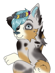 Cute doggy by Pinkwolfly