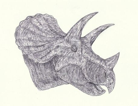 Triceratops 6 by Kahless28