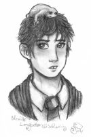 My Neville by evafortuna