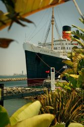 Queen Mary by f3rdie