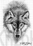 I'm the Wolf by krizok