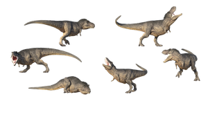 Free Stock PNG:  T-Rex realistic renders by ArtReferenceSource2