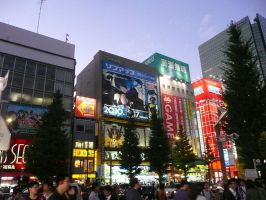 Akiba at Dusk by ShiverZPhotography