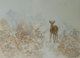 The Roe Deer. by SueMArt