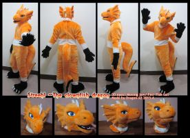 Streehl the dragon full suit by dragon-x2