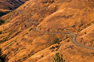 The Long and Winding Road by quintmckown