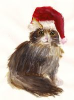Christmas Cat by Ookami-SeaEmpress
