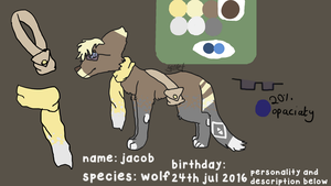 Jacob - wolf OC by Ferretser