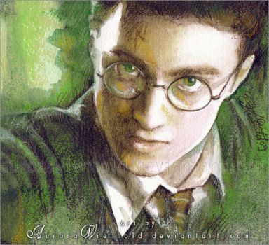 Harry Potter by RoryonaRainbow