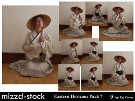Eastern Horizons Pack 7 by mizzd-stock
