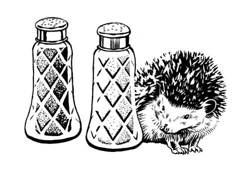 Hedgehog and Salt and Pepper Shakers by mlauritano