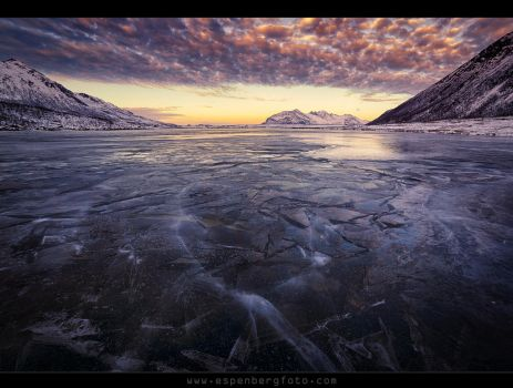 The last Ice Age by berg77