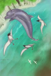 Ecco the Dolphin by Madwort