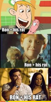 rons + rats by animeannie4869