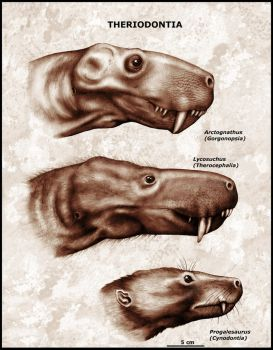 Portraits of different theriodonts by mojcaj