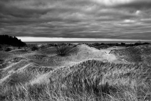 Grass Covered Dunes Along Lake Michigan by starfire777
