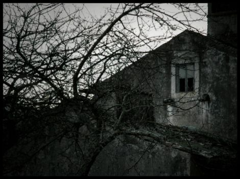 The Black House by Anis