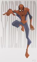Townsend SPIDER MAN by TimTownsend