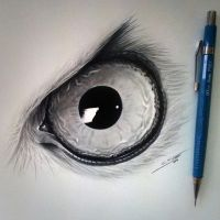 Owl Eye Drawing by LethalChris