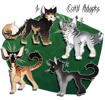 CotV: Tabby Cat Adoptables by falcifers