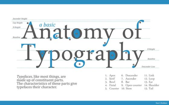 Anatomy of Typography by YordanH