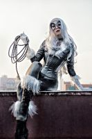 Black Cat by Fiora-solo-top