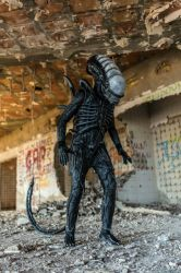 xenomorph cosplay hd 3 by BiXoLoCoO616