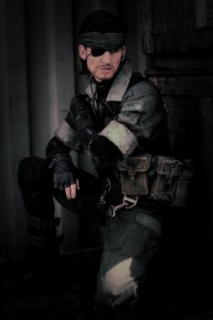 Saving the game, Snake? by RBF-productions-NL