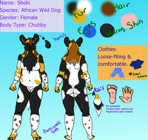 2011 Reference Sheet by ShokiDeNai