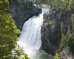 Yellowstone River Falls Upper Falls by swashbuckler