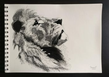 Leo by Dr4phT