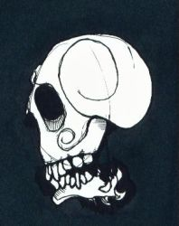 just another skull by dinocat