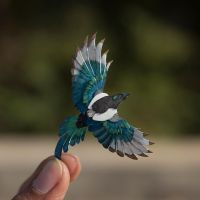 Eurasian Magpie by NVillustration