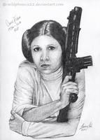 Princess Leia by Wildphoenix22