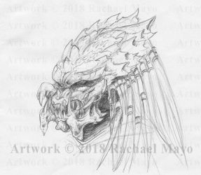 Predator head sketch 2018 June by rachaelm5