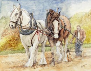Draft Shire Horses by morgansartworld