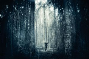In the woods by MikkoLagerstedt