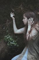 To listen to awakening of roots by MariaPetrova