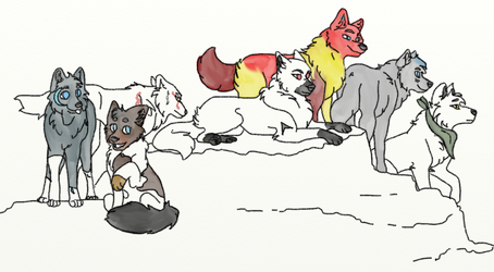 some of my wolves by hypergurl289