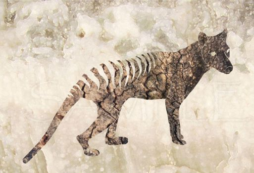 Thylacine tree and stone by hontor