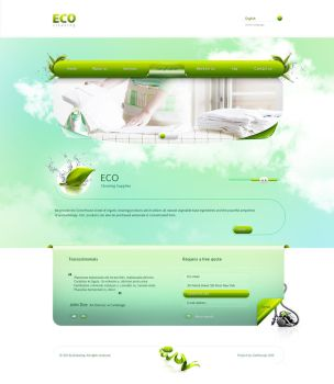 Eco Cleaning Website by carl913