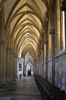 Int. 6 Wells Cathedral. England by jennystokes