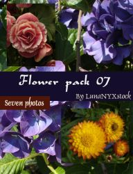 Flower pack - 07 by LunaNYXstock